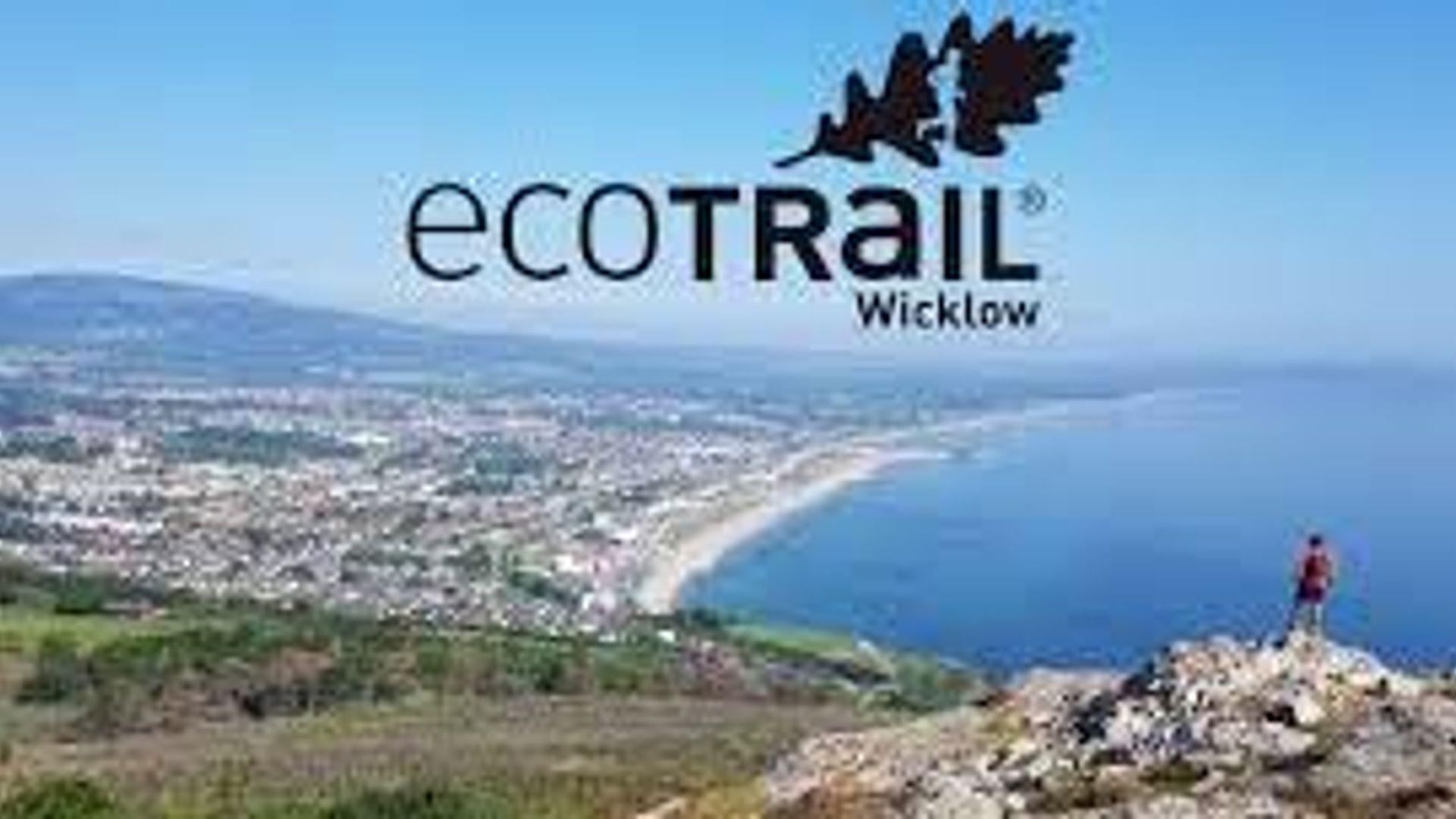 2020 Wicklow Trail Challenge 29k