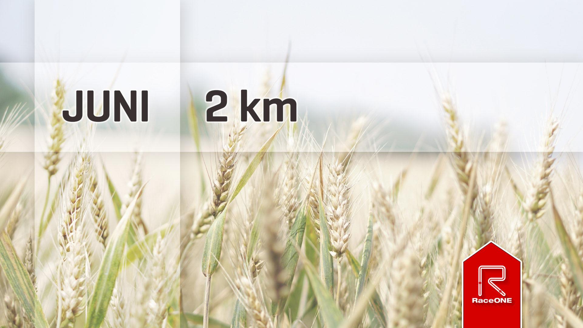 RaceONE - Juni 2km