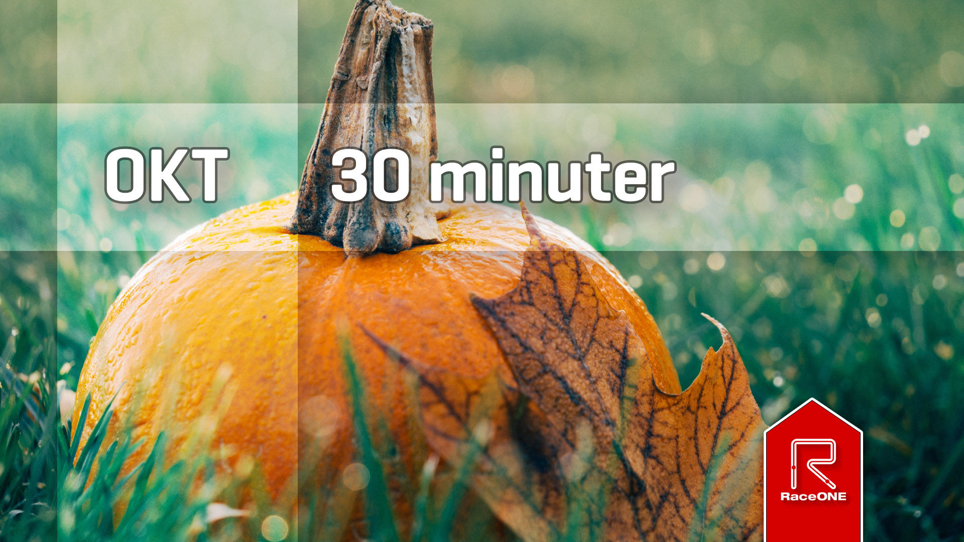 RaceONE - Oktober 30 minuter